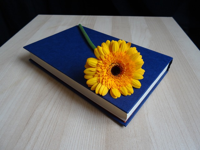 Developing an Effective Book Launch